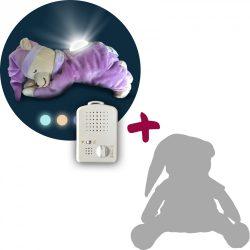 Purple Doodoo bear with lamp + spare plush